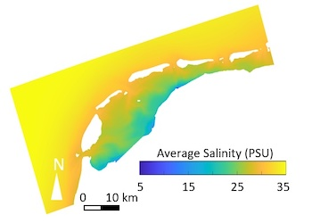 Long-term mean salinity distribution in the Dutch Wadden Sea