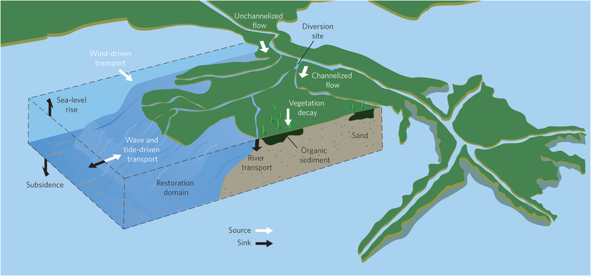 Figure-1-Land-building-sediment-budget-in-a-delta-As-illustrated-here-by-a-hypothetical