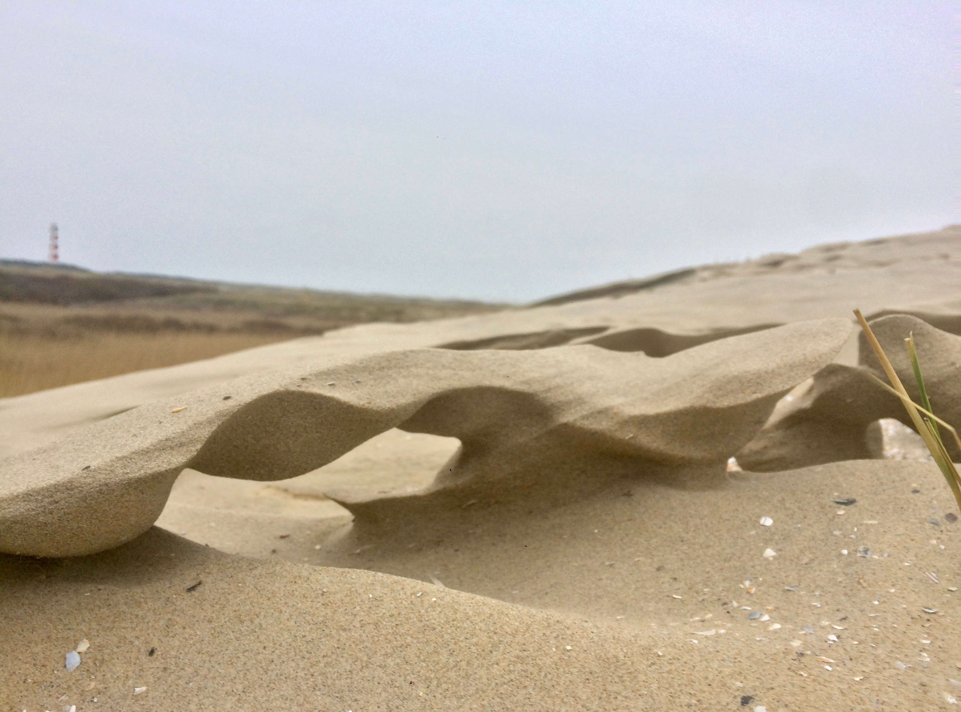 1st place Quirijn Lodder Sand bridge
